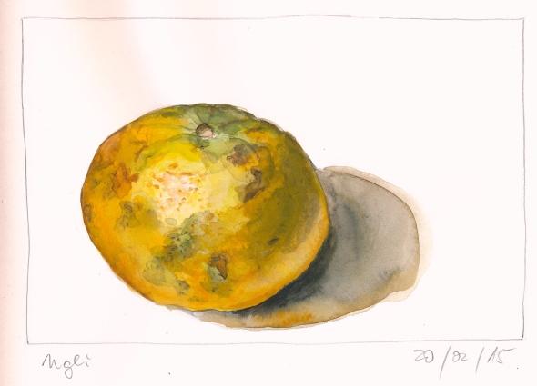 Ugli-Frucht. Aquarell in Stillman&Birn Zeta.