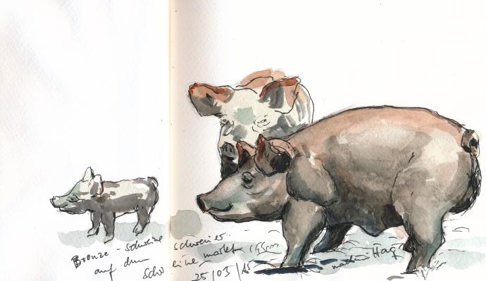 Bronzeschweine am Schweriner Schweinemarkt