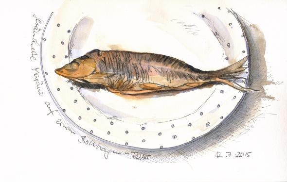 Schaalseemaräne auf einem Bollhagen-Teller, gezeichnet mit Super5-Tinte in einem Lamy-Joy-Füller und koloriert mit Aquarellfarbe